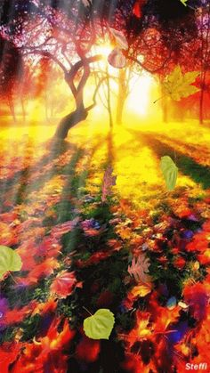 Você realmente sabia? Postagens Populares: A vida tira as folhas secas para as novas virem a ...