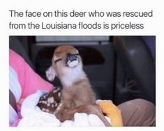 24 Funny Pictures Of The Day