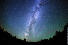 A big, starry night sky - stars in the Milky Way on a clear, bright night near McCall, Idaho USA. Copyright: Royce Bair. Click large image to learn and see more...