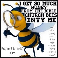 Psalms  81:16  He would have fed them also with the finest of wheat; And with honey from the rock I