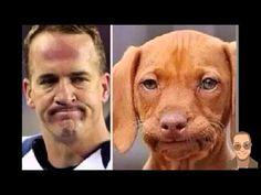 Los Mejores Memes Super Bowl 50 2016 | Memes Del Super Bowl