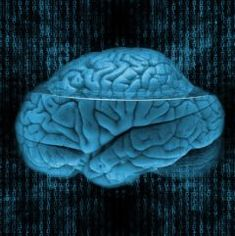 Decisions can be motivated by thoughtful consideration from our higher mind (frontal lobe/executive functions) or fear-based survival instincts (amygdala, impulses) from a more primitive mind. When decisions are informed by our higher mind, they are more...