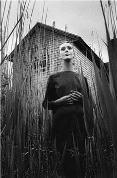 Jean- Loup Sieff, Ina à East Hampton, New York, 1964