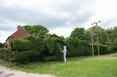 Epic Topiary Garden Art (Hedge Trimming) - Page 2 of 3 - Live #Dan330