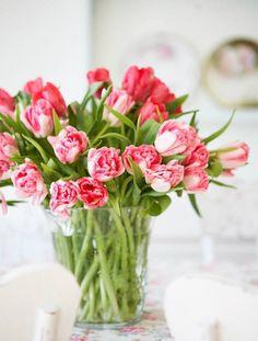 Vida em Flores