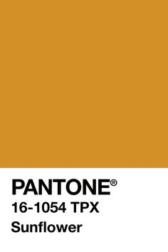 March20th @pantone Sunflower