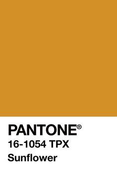 My Welcome Ive missed you Pantone Swatches, Color Swatches, Pantone Colour Palettes, Pantone Color, Pantone Cmyk, Colour Pallete, Colour Schemes, Paleta Pantone, Yellow Pantone