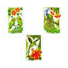 Vervaco PN-0154071 VER Miniaturen Exotische Vögel Aida 3er Set