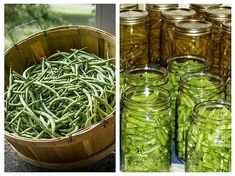 New Recipes, Pickles, Cucumber, Cabbage, Food News, Vegetables, Canning, Veggies, Cabbages