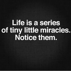 Life is a series of tiny little miracles. Notice them. #wisdom #affirmations #miracles