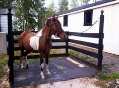 Image result for outdoor horse wash bay