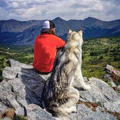 Wolfdog On Adventures of Loki's Memories http://www.yourgreatplaces.com/wolfdog-on-adventures-of-lokis-memories/ #dog, #adventure #loki