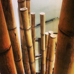 Bambú, detalle de la #decoración // Bamboo a #decoration detail. #Hotel Servigroup Calypso
