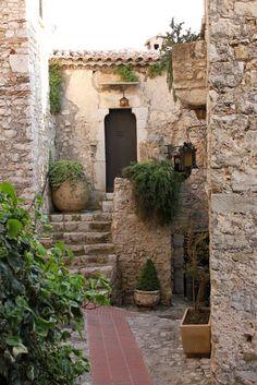 La piedra y las plantas: Pura naturaleza ¡DIVI!
