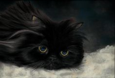 'Pensive' by Claudia Jorio. Pastel painting of a male Persian cat. Painting's size: 25x35 cm