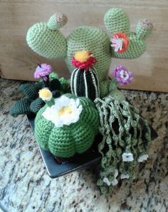 crochet cactu flower at DuckDuckGo Crochet Cactus, Crochet Food, Crochet Flower Patterns, Crochet Flowers, Crochet Decoration, Yarn Bowl, Cactus Y Suculentas, Amigurumi Patterns, Handmade Crafts