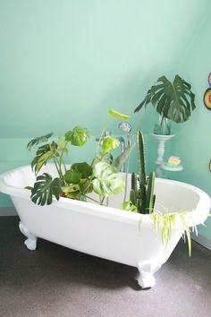 Der Mai auf SoLebIch   SoLebIch.de #interior #summer #realhomes #urbanjungle #monstera #bathroom