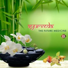 Ayurvedic products supplier, A Complete Source of All ayurvedic