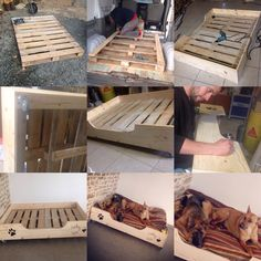 diy freutag hundebett aus holz selber bauen hunde pinterest hundebett aus holz. Black Bedroom Furniture Sets. Home Design Ideas