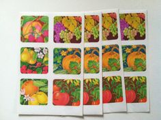 Vintage 1970s Retro Kitsch Fruit and Fall Gift by VinTaGeOus102607, $5.00