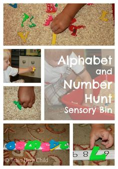 Alphabet and number hunt sensory bin and other ideas for hands on learning.