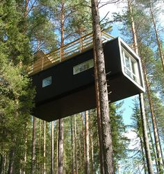 treehouse couldn't be just a tree-house More