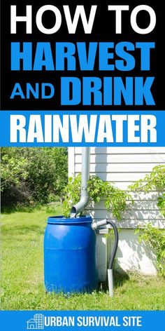 Harvesting rainwater is an ability any long-term prepper should have. However, there are more considerations than expect. Survival Life Hacks, Survival Food, Outdoor Survival, Survival Prepping, Survival Skills, Emergency Preparedness, Emergency Preparation, Emergency Supplies, Survival Videos