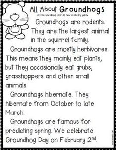 Celebrate Groundhog Day with engaging literacy and math activities! This fun and interactive notebook is the perfect way to introduce, learn, and celebrate Groundhog Day! Students will learn all about Groundhog Day in many fun ways! Preschool Groundhog, Groundhog Day Activities, Craft Activities For Kids, Kindergarten Activities, Preschool Winter, Preschool Class, Classroom Activities, Kid Crafts, Learning Activities