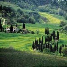CHIANTI, ITALY (Wine-tasting) we will be here!