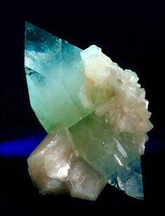 Fluorapophyllite #minerals #rocks #crystal