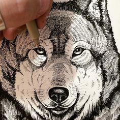 Lines  #wolf #illustration #lines #artoftheday #handdrawn #work #oldblackbamboo #vintage