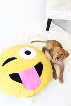 DIY Emoji Dog Bed | studiodiy.com