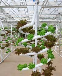 cultivos hidroponicos verticales - Buscar con Google