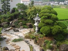 Contemporary Japanese garden with stepping stones and lantern.