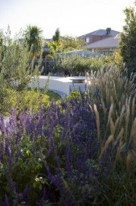 The Windswept Garden | BoldSimplicity