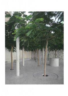 Bas Smets on Culture and Landscape – TLmagazine Landscape Architects, Pathways, Culture, Artist, Plants, Stockings, Paths, Artists, Plant