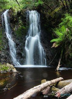 Hogarth Falls, Strahan, Tasmania, Australia