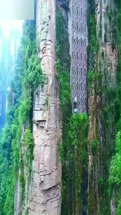 The Bailong Elevator is the world's highest outdoor elevator, towering an astonishing feet high inside the National Forest Park in the Wulingyuan area of Zhangjiajie, China. Beautiful Vacation Spots, Beautiful Places To Travel, Cool Places To Visit, Zhangjiajie, Places Around The World, Around The Worlds, Beste Gif, Nature Photography, Travel Photography