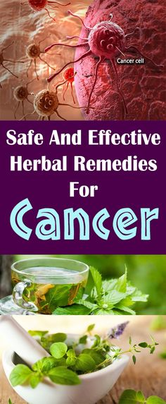 Safe And Effective Herbal Remedies For Cancer#health #beauty #getrid #howto #exercises #workout #skincare #skintag #bellyfat #homeremdieds #herbal