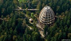 Observation tower Baumwipfelpfad in Bavaria, spiral staircase observation tower observation deck central europe bavaria