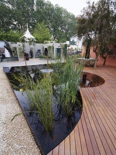 Pond designs on pinterest water features ponds and koi for Garden decking features