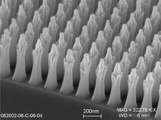 Best Electron MicroGraph