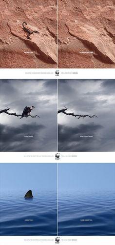 Soldaki Resim Korkutucu, Sağdaki Dahada Korkutucu... - 4finite.com