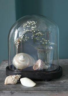 STIJLIDEE Interieurstyling Tip >> Styling van schelpen in een glazen stolp