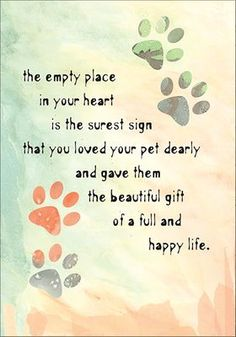 Sympathy Cards for Pets Pet Loss Quotes, Dog Quotes, Animal Quotes, Child Quotes, Pet Sympathy Quotes, Pet Sympathy Cards, Sympathy Verses, Condolences Quotes, Der Boxer