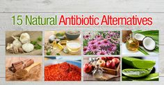 Natural Holistic Remedies Be prepared for your next infection or illness with this list of 15 natural antibiotic alternatives! - Be prepared for your next infection or illness with this list of 15 natural antibiotic… Cold Home Remedies, Natural Health Remedies, Natural Cures, Natural Healing, Herbal Remedies, Natural Beauty, Natural Oil, Natural Foods, Holistic Remedies