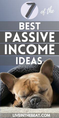 What is passive income and how can it improve your financial future? Here are 7 of the best passive income ideas to help inspire you to boost your financial wellbeing and create passive income streams that will last. What Is Passive Income, Passive Income Opportunities, Passive Income Streams, Creating Passive Income, Peer To Peer Lending, Rich Dad, E Commerce Business, How To Become Rich, Way To Make Money