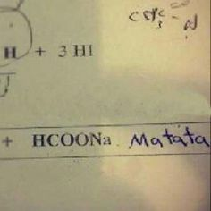 Awesomely Fun Incorrect Test Answers From Kids (28 Picz): Hakuna Matata