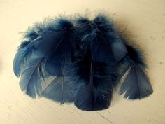 FEATHERS NAVY BLUE turkey flat feathers craft by DIYBridalSupplies