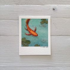 items-similar-to-original-koi-watercolor-painting-fish-polaroid-miniature-art-on-etsy/ - The world's most private search engine Gouache Painting, Painting & Drawing, Painting Canvas, Art Mini Toile, Aesthetic Painting, Aesthetic Drawing, Arte Sketchbook, Mini Canvas Art, Canvas Canvas